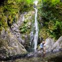 Goldstream park family photograhpy